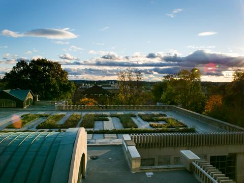 Photo of library roof at Tufts University